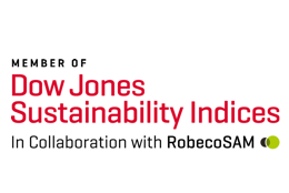 DOW JONES SUSTAINABILITY INDEX 2018/2019